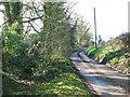 TM1899 : Mergate Lane by Evelyn Simak