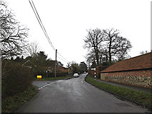 TM2598 : The Street, Shotesham by Adrian Cable