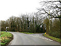 TM2697 : Brooke Road, Shotesham by Adrian Cable