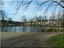 TQ4094 : St John's Pond, Buckhurst Hill by John Lord