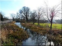 TL0506 : River Gade in Hemel Hempstead by Bikeboy