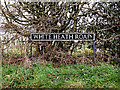 TM3199 : White Heath Road sign by Adrian Cable