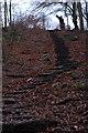 SE2044 : Steps up Otley Chevin by John Winder