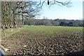 TQ5612 : Muddy field edge near Hackhurst Farm by Julian P Guffogg