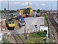 SU3912 : Millbrook freightliner terminal by David Martin