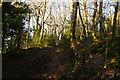 TQ3364 : Conduit Lane, Coombe Wood, Croydon by Christopher Hilton