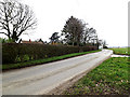 TM2398 : Rogers Lane, Shotesham by Geographer