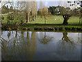 SP2965 : Floodmeadow, River Avon by Emscote Gardens, Warwick 2014, February 27, 15:48 by Robin Stott