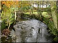 NY3308 : Easedale Beck viewed from Goody Bridge by Graham Robson