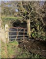 SX4575 : Gate onto the Lumburn by Derek Harper