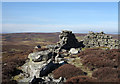 NY9909 : Walling on Scargill High Moor by Trevor Littlewood