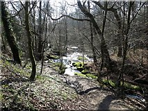 SD6838 : Sunlight on the stream by Philip Platt