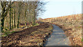 J3268 : New path, Minnowburn, Belfast (6) by Albert Bridge