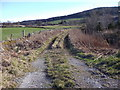 NJ5001 : Access track to a field off B9094 by Stanley Howe