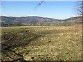 NN9558 : Farmland near Kinnaird by Jennifer Jones