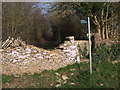 SP2002 : Stone stile and public footpath to Southrop by Vieve Forward