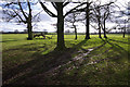 NY5328 : South from Brougham Castle by Ian Taylor