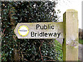 TM2397 : Palmer's Lane bridleway sign (Boudicca Way) by Adrian Cable