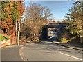 SJ5297 : Railway Bridge over Woodlands Road by David Dixon