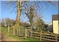 SX4477 : Footpath, Lamerton by Derek Harper