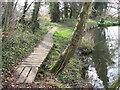 TG1812 : Boardwalk beside the River Wensum by Evelyn Simak