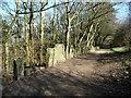 SE2044 : Chevin Forest Park [21] by Christine Johnstone