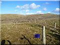 NY0713 : Fenced Fold, Kinney How by Michael Graham