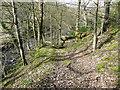 SE0420 : Field access track by Humphrey Bolton