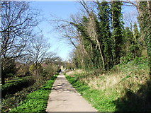 TQ7668 : Footpath leading from the Great Lines to Whiffen's Avenue, Chatham by Chris Whippet