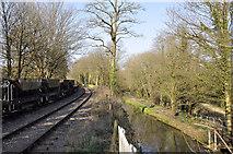 SO6302 : Dean Forest Railway by Stuart Wilding