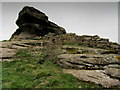 SE3552 : Weathered Gritstone Outcrop below Braham Hall by Chris Heaton