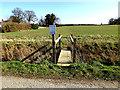 TM3793 : Footbridge to the permissive bridleway off Church Road by Geographer