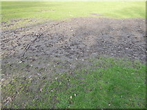 TM1644 : Muddy grass in Christchurch Park by Hamish Griffin