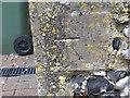 SU9272 : Ordnance Survey Cut Mark by Peter Wood