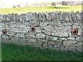 SY4691 : Stone Wall , Melplash Showground by Nigel Mykura