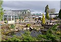 NH6543 : Inverness Botanic Gardens by Craig Wallace
