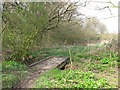 TL4204 : Wooden footbridge by Stephen Craven
