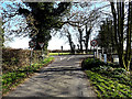 TM3592 : Willow Lane, Ellingham by Adrian Cable