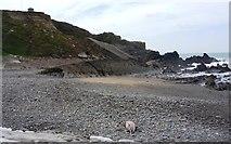 SS2006 : Bude Haven breakwater, looking towards Whale Rock by Clint Mann