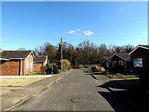 TM3792 : Mill Close, Kirby Cane by Adrian Cable