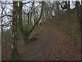 SD6389 : Bridleway above Middleton Bridge by Karl and Ali
