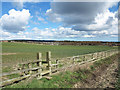 NZ1936 : Field with stile access for footpath by Trevor Littlewood