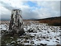 SD6753 : Triangulation Point on Burn Fell by Anthony Parkes