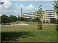 TQ3377 : Burgess Park, manmade knoll and bank slide by Robin Stott