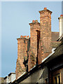 TL4458 : Chimney stacks in Pembroke Street, Cambridge by Roger  Kidd