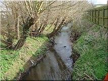 SO9568 : Sugar Brook, Bromsgrove by Rob Newman