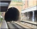 TQ5839 : Wells Tunnel Entrance by N Chadwick