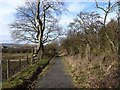 NZ1654 : Footpath from Flint Hill to Dipton by Oliver Dixon
