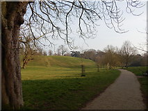 TM1645 : Path in Christchurch Park by Hamish Griffin