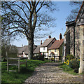 TL5136 : Wendens Ambo: churchyard and Church Path in spring by John Sutton